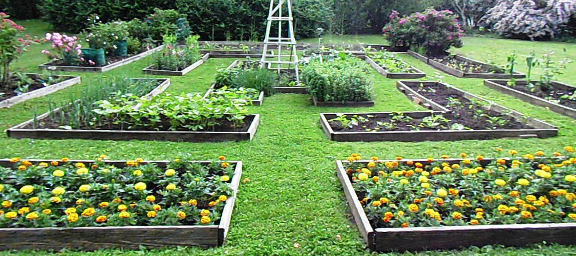 Larg grassy area with multiple plots of garden beds with vegetables and flowers