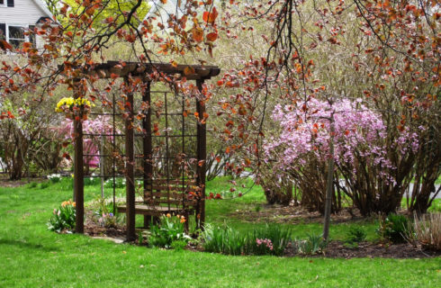 Small wooden structure with a wooden bench in a garden of flowers and red maple trees.